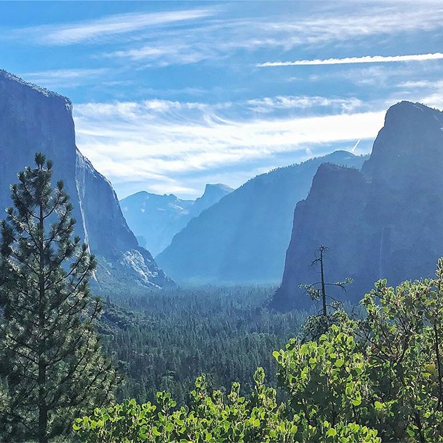 """Beautiful day in @yosemitenps knocking out all the hikes listed as """"easy."""" Not pictured: the sheer nightmare that is looking for parking in the park on a summer Saturday. Also not pictured, my growing expertise on the French onion soup offerings of the park. I'm 3 for 3 meals. 💁🏻♀️ . . . #tunnelview #elcap #bridalveilfalls #yosemitefalls #halfdome"""