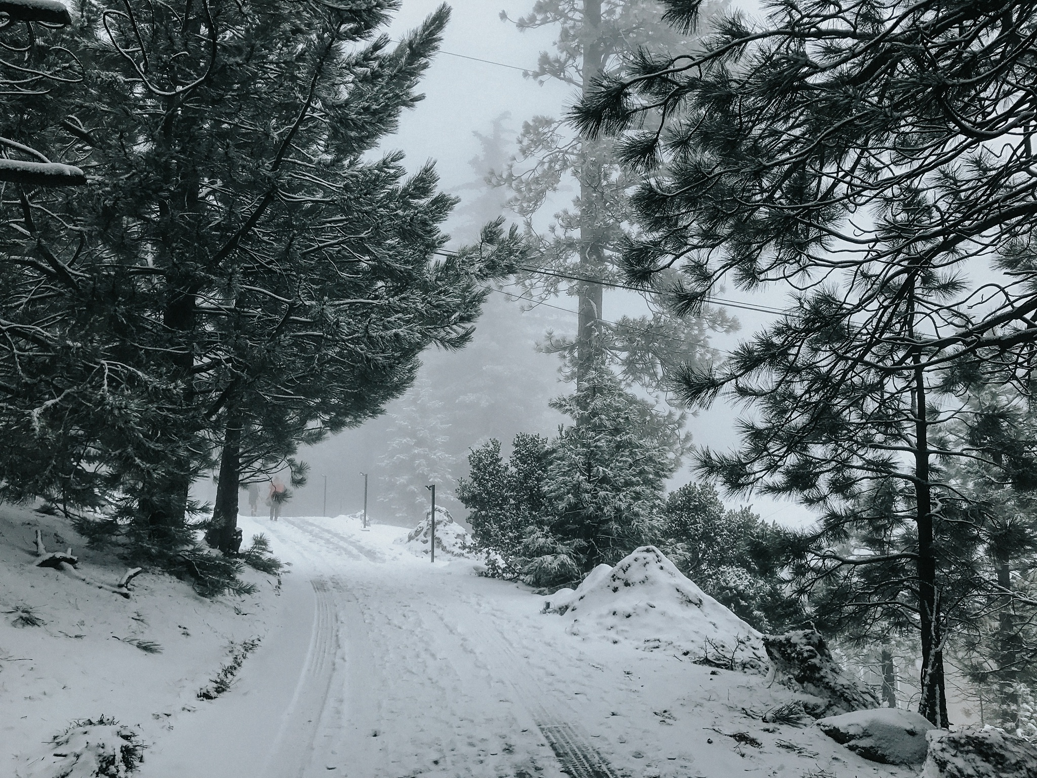 Leaving Field Trip and snowed in.