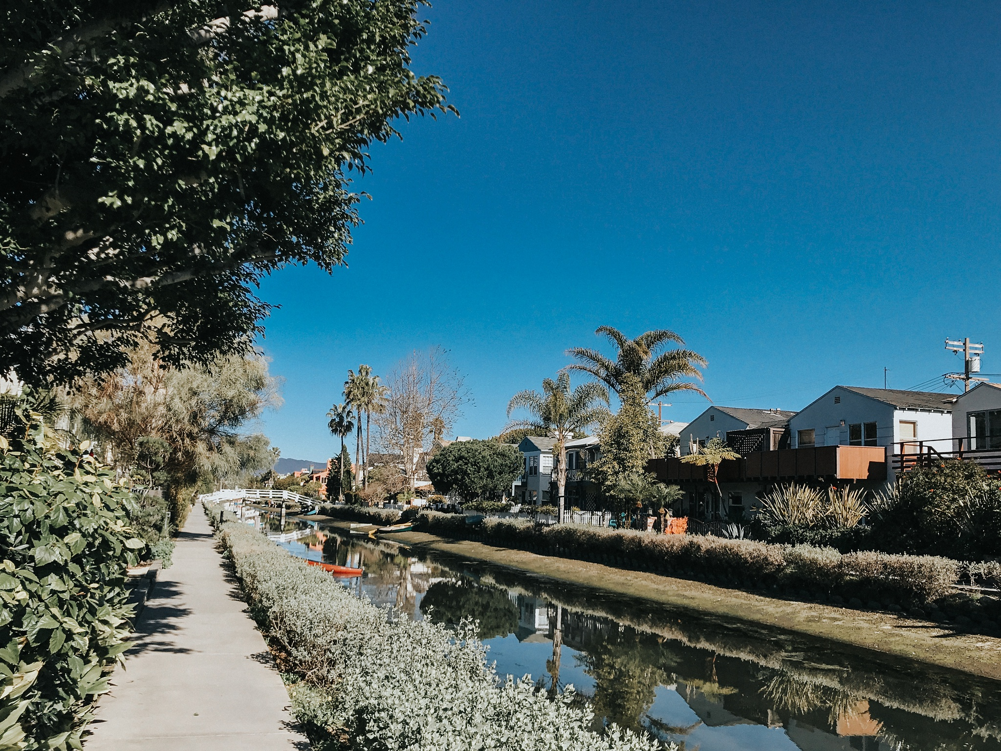 The canals were so pretty - even if it was a little more like a swap than a canal :/