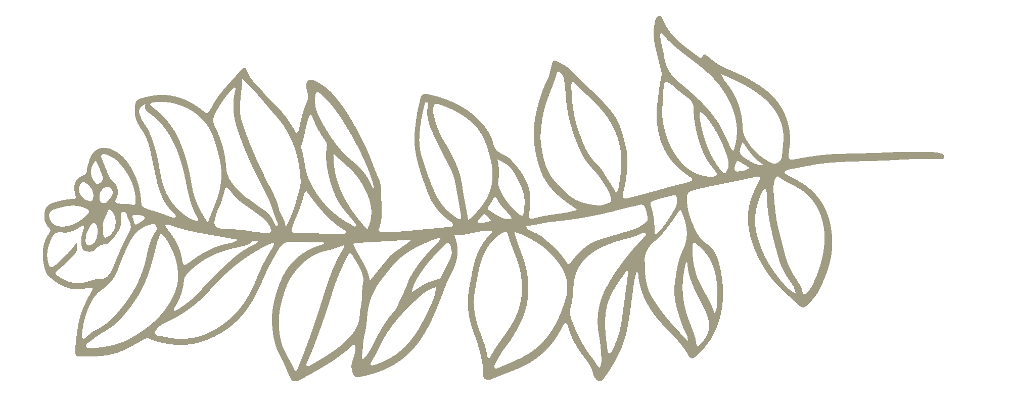 Hand drawn floral 06.png