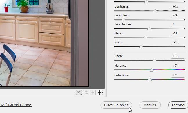 Ouvrir une image sous forme d'objet dynamique dans Photoshop depuis Camera Raw