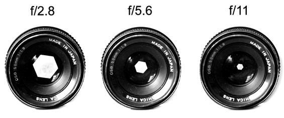 les bases de la photographie.jpg