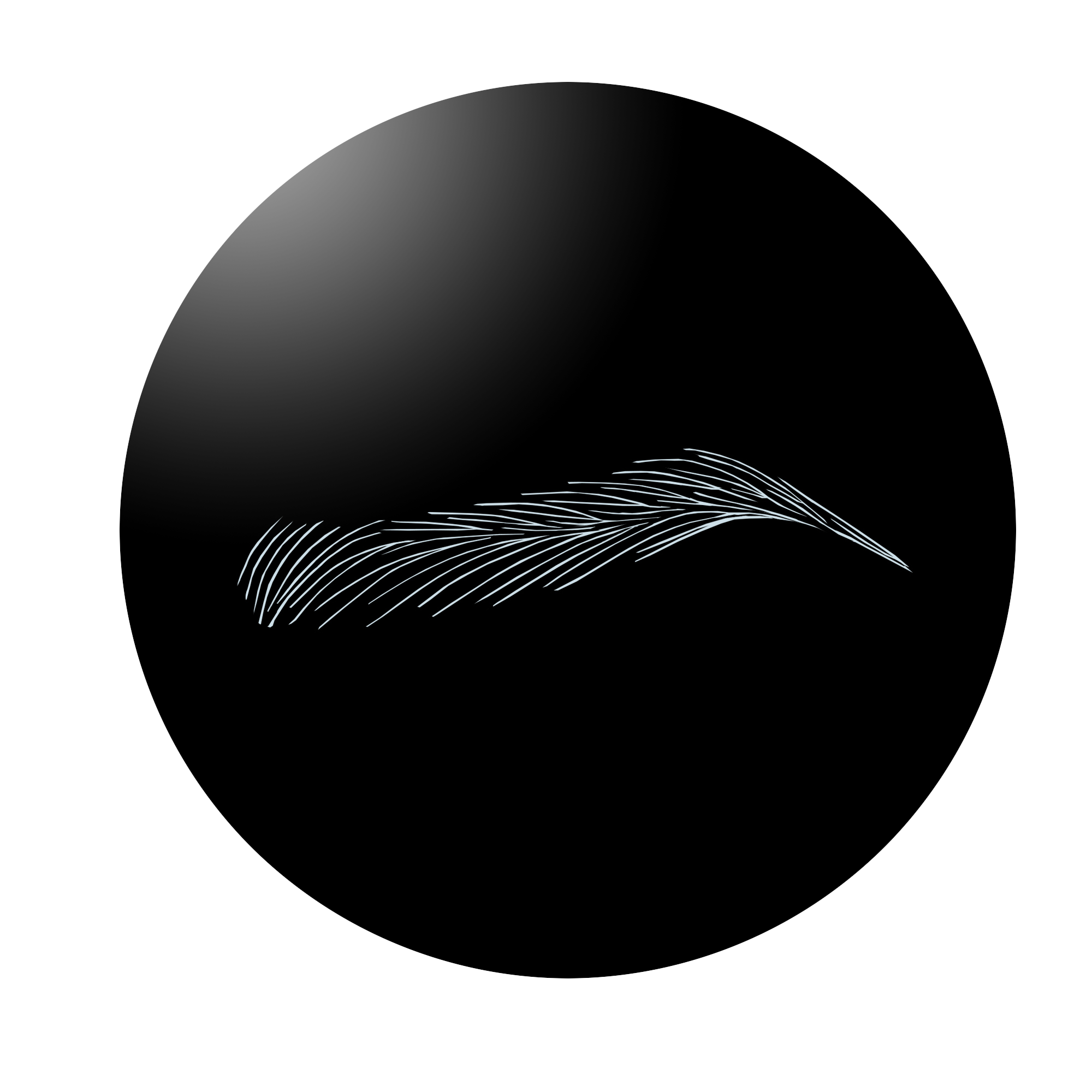 SharpBrows has created Europe ONE Brow pattern that is the most widely used brow pattern in Europe. It has become an industry standard for many artists with different backgrounds.