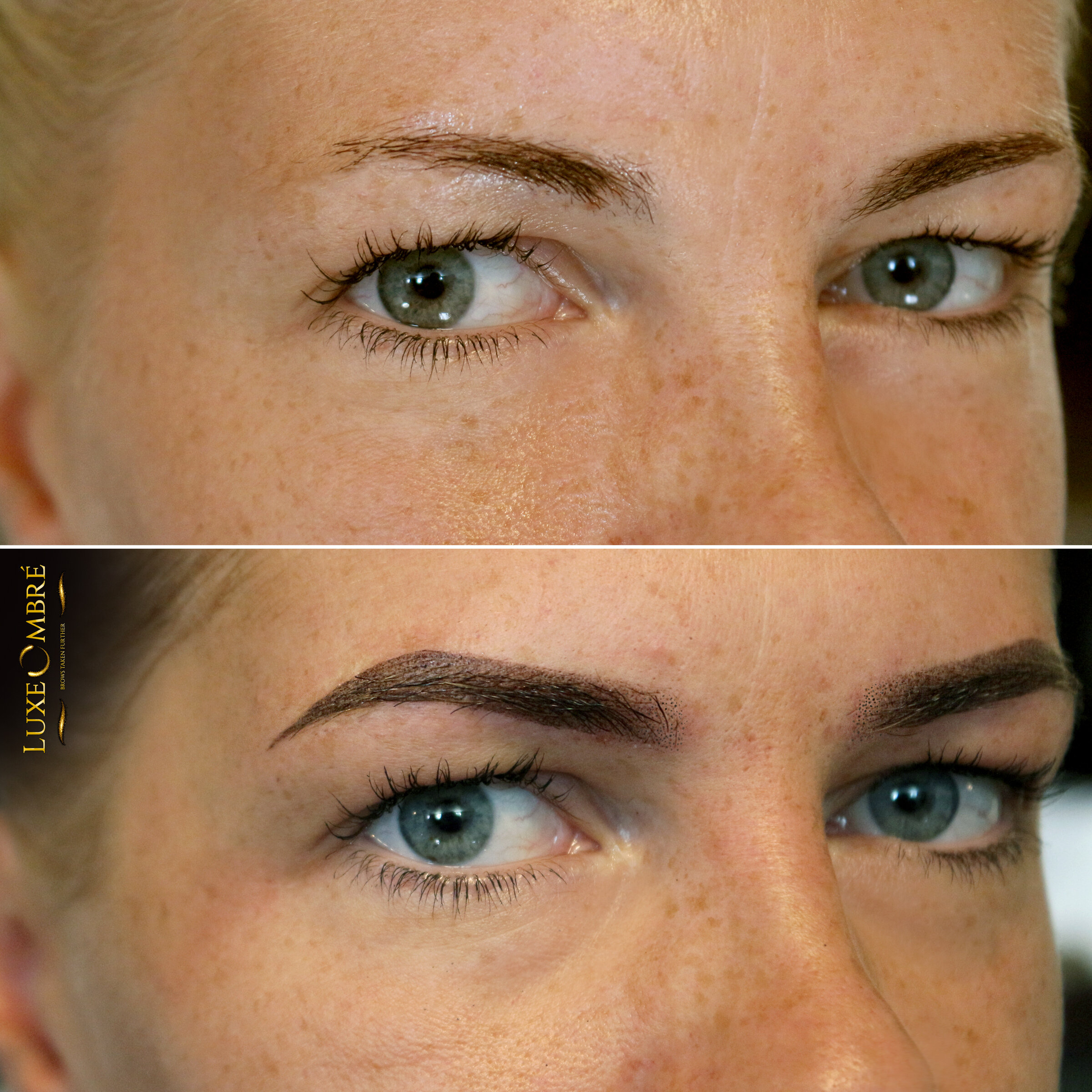 Dramatic change with LuxeOmbre - a small brow grown into bold.
