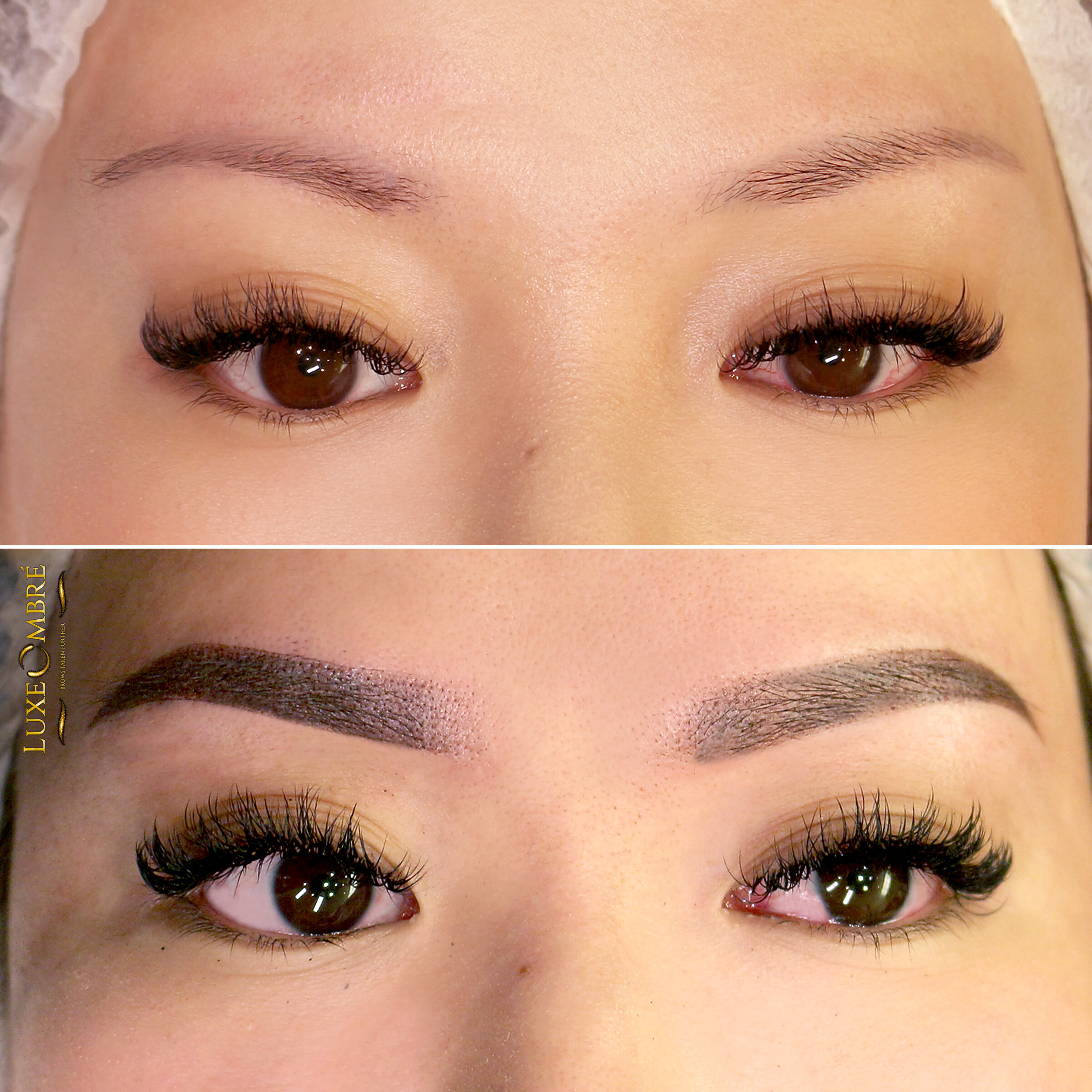 LuxeOmbre technique to ordinary and rather weak brows.
