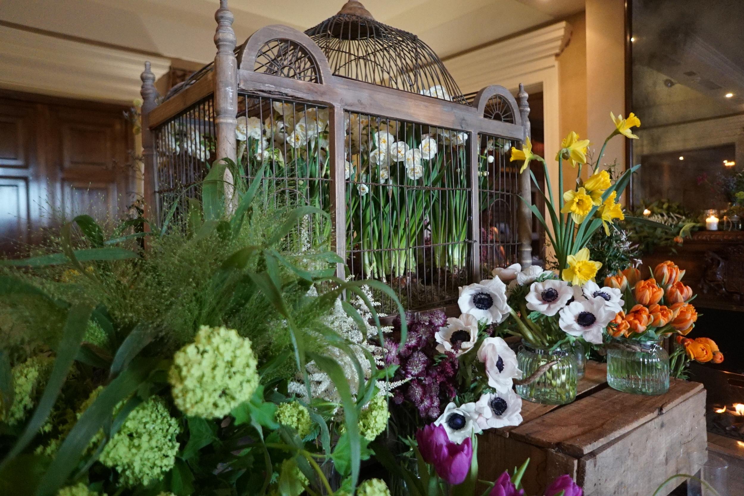 Wedding in Pimlico
