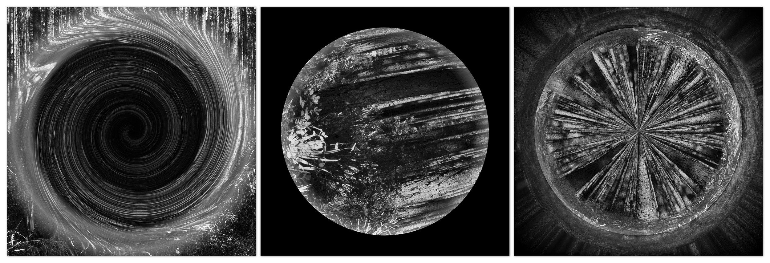 Celestial Bodies of the Osceola Galaxy (Triptych), 2018