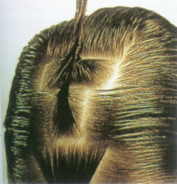Pin Curl Sections