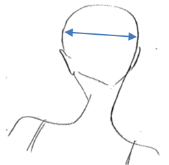 Horizontal Parting  This section runs horizontally across the head. This can be across the crown, at the nape or more commonly from ear to ear.