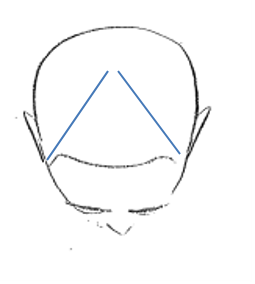 V- Parting   This parting allows you to place colour according to the shape of the head and can be used creatively for placement of colour.