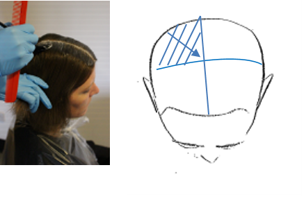 Starting at the back of the head at the nape, take diagonal sections working up towards the crown. Apply colour to both sides of the section from root to point ensuring an even and thorough application, placing the coloured hair onto the plastic cape.