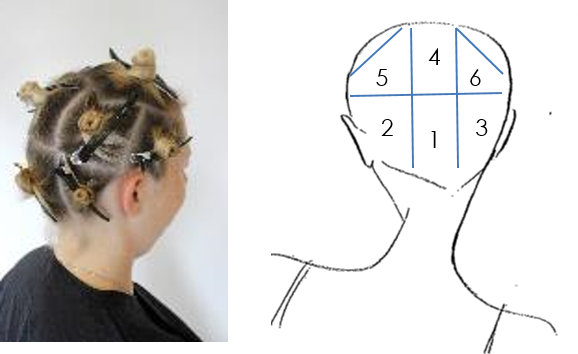 Before the colour the hair is sectioned into nine. Two sections at the centre of the back, two sections either side behind the ear, one section just above the ear and a section equally place through the natural parting.