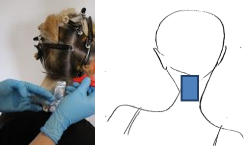 Starting at the nape at the back centre section, a slice of hair is taken by running a pin tail comb closely along the scalp and lifted up away from the rest of the hair.