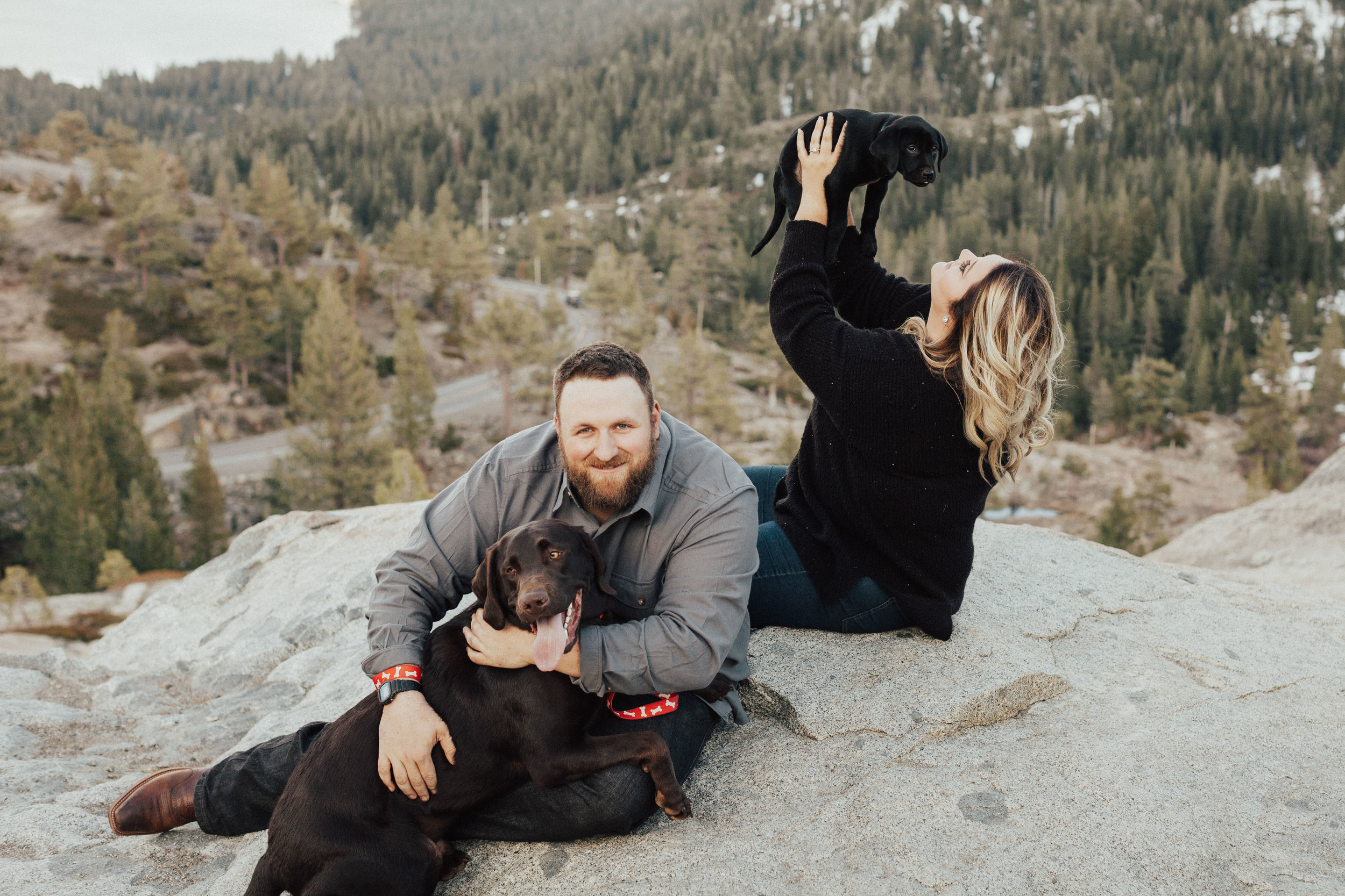 Lab puppies and engagement photos!