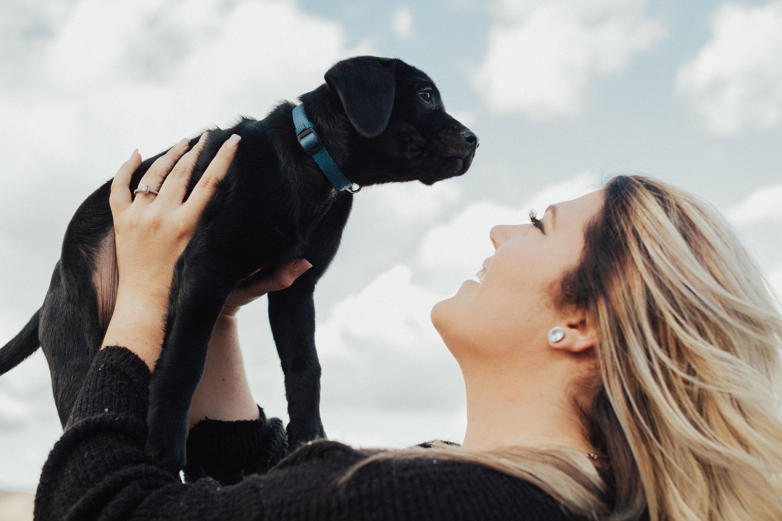 Engaged dog mama!
