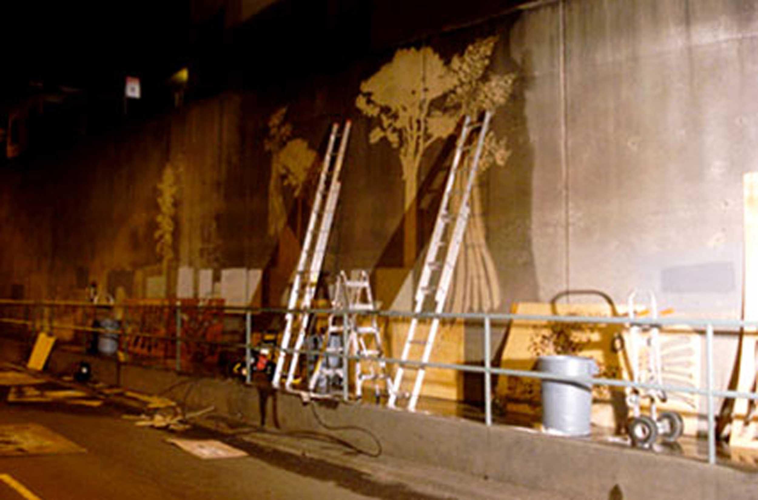 Reverse_Graffiti_Project_2.jpg