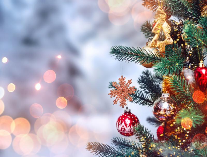 Christmas Card Photo.JPG