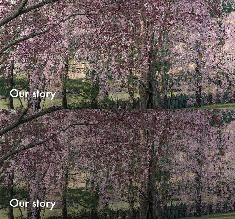 Story_Sprite.jpg