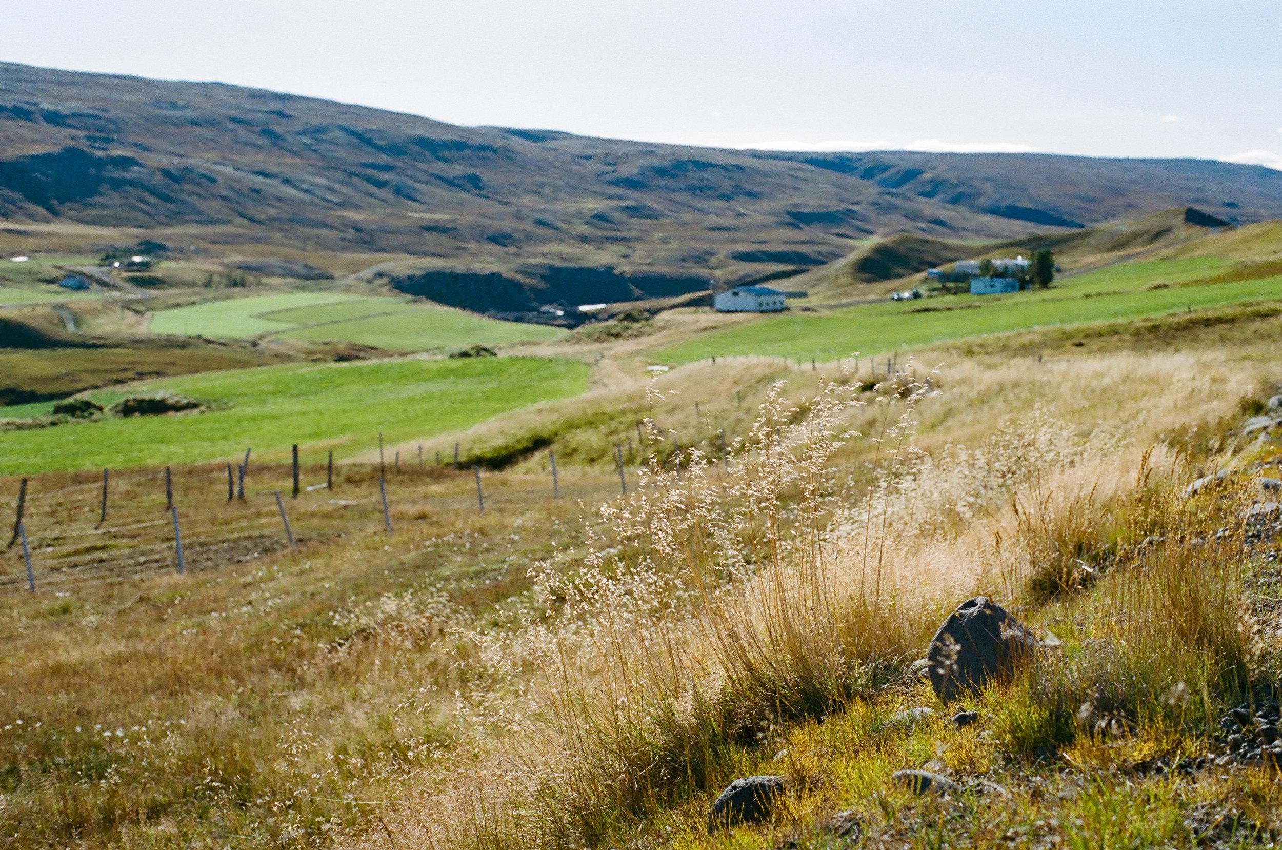 Iceland - 00167 - Chris Goetchius 2017.jpg