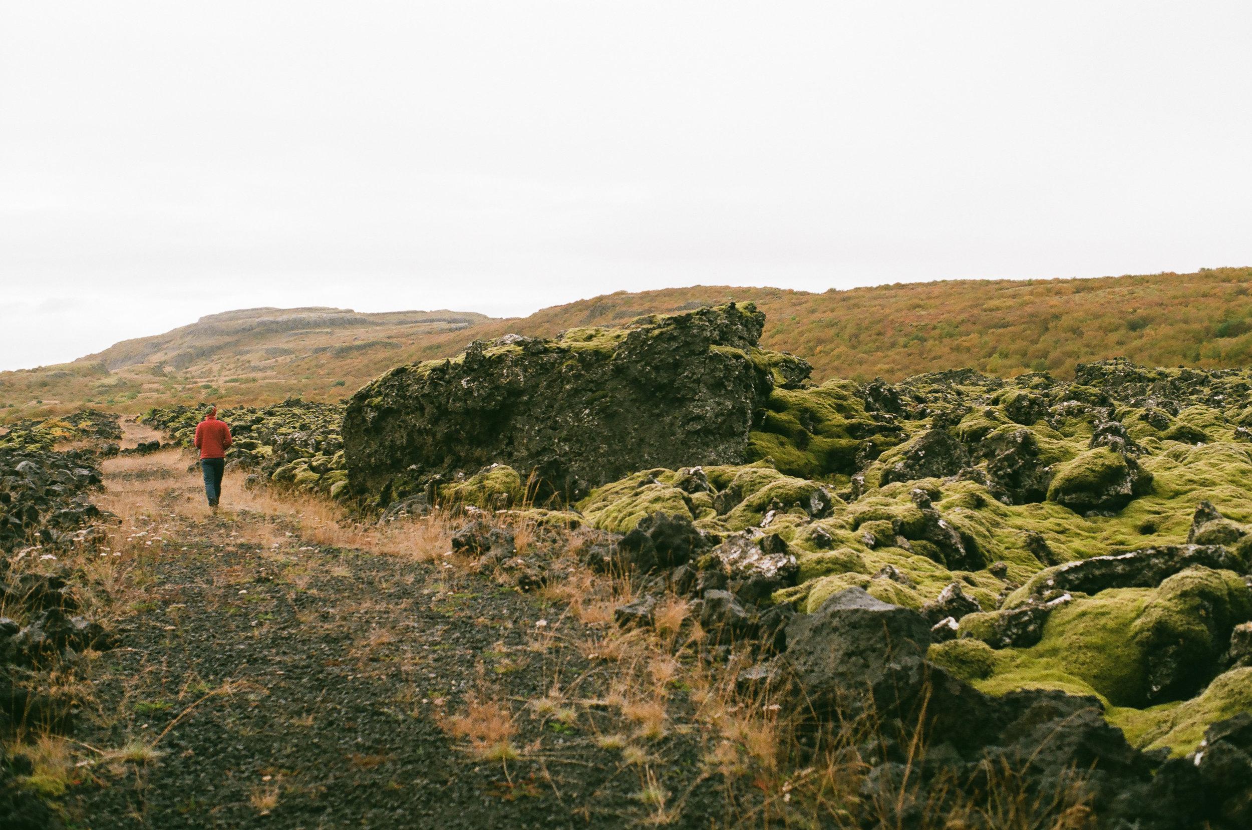 Iceland - 00192 - Chris Goetchius 2017.jpg