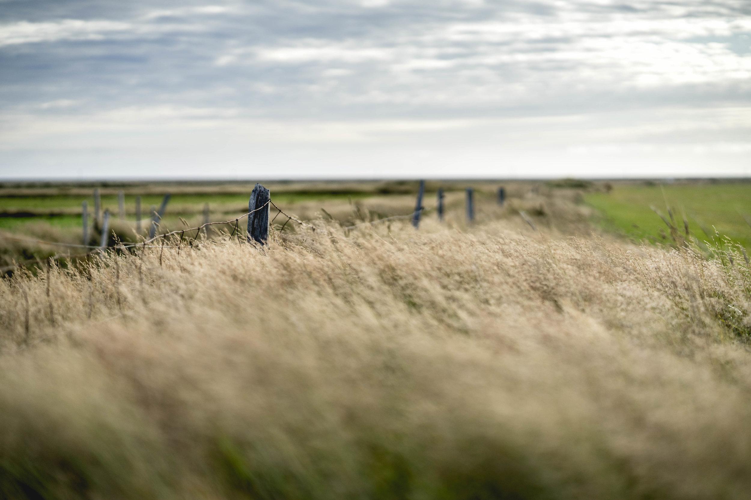 Iceland - 00494 - Chris Goetchius 2017.jpg