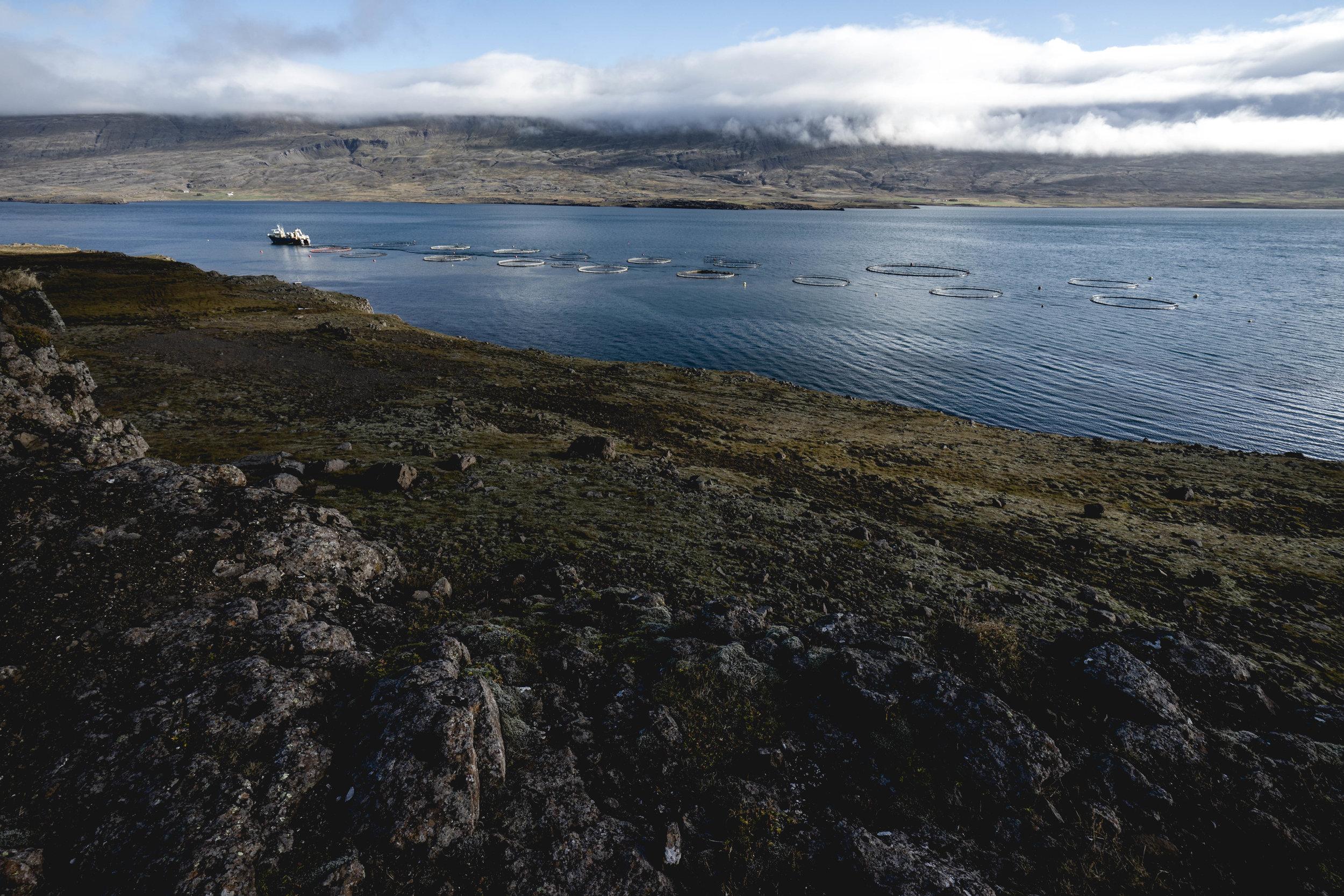 Iceland - 00741-2 - Chris Goetchius 2017.jpg