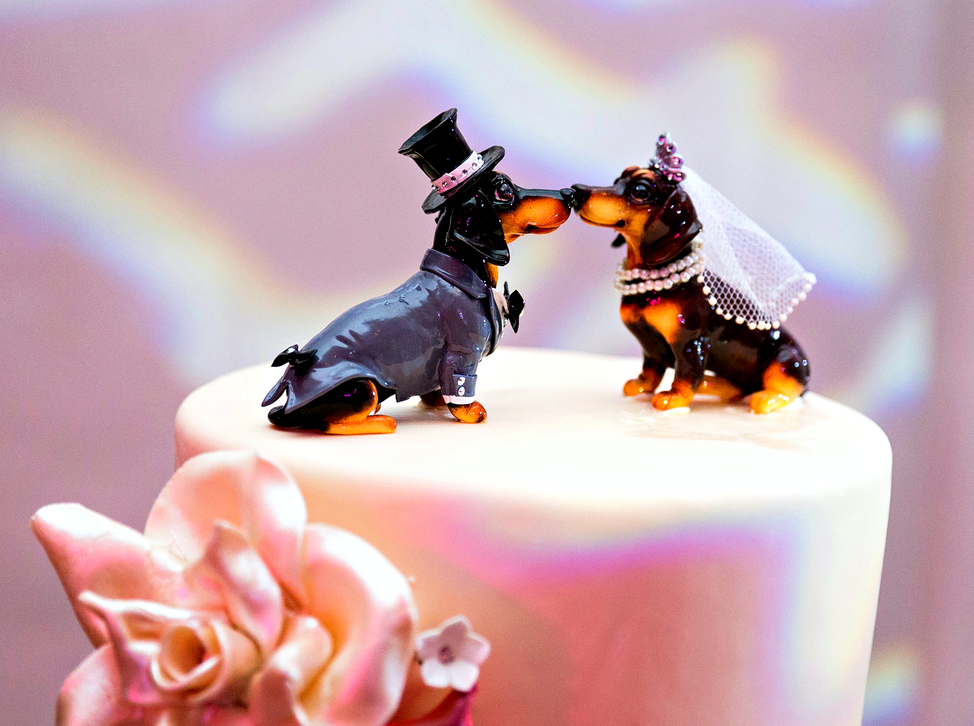 Dog Wedding Cake Topper | Marriott Singer Island Resort Wedding