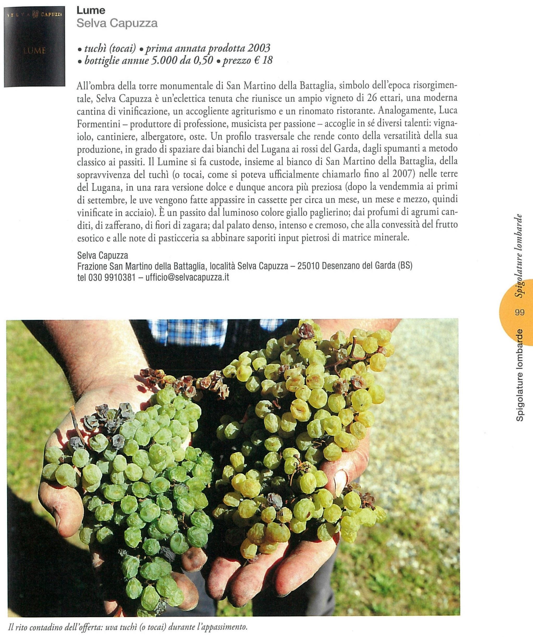 Vini Dolci d'Italia_pag 99.jpg