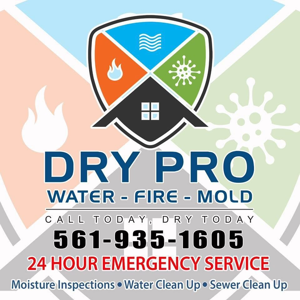 dry pro 935.jpg