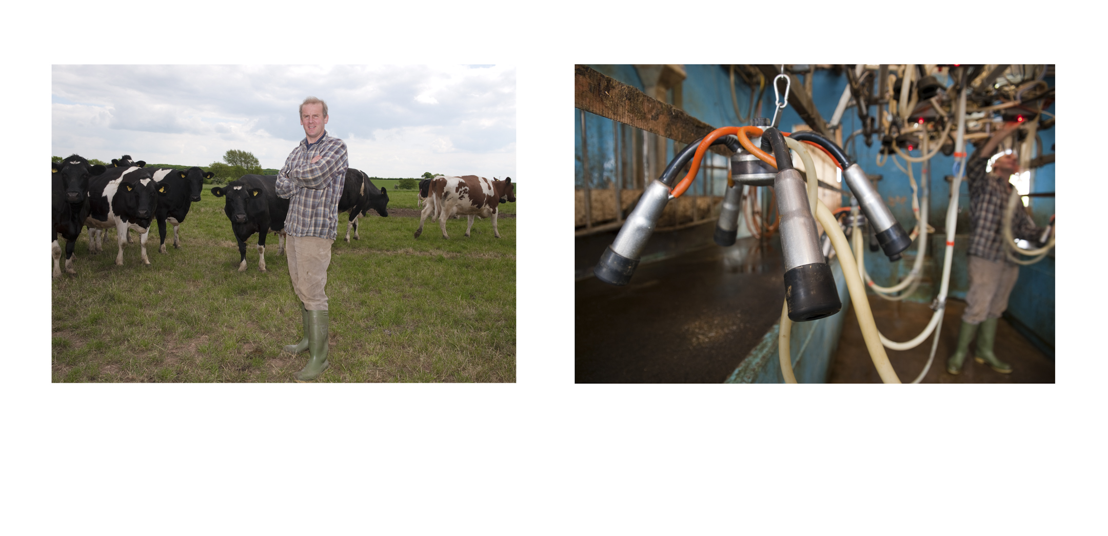 Chris Johnson, Dairy Farmer,  Johnson's Farm, Ossington, Nottinghamshire.