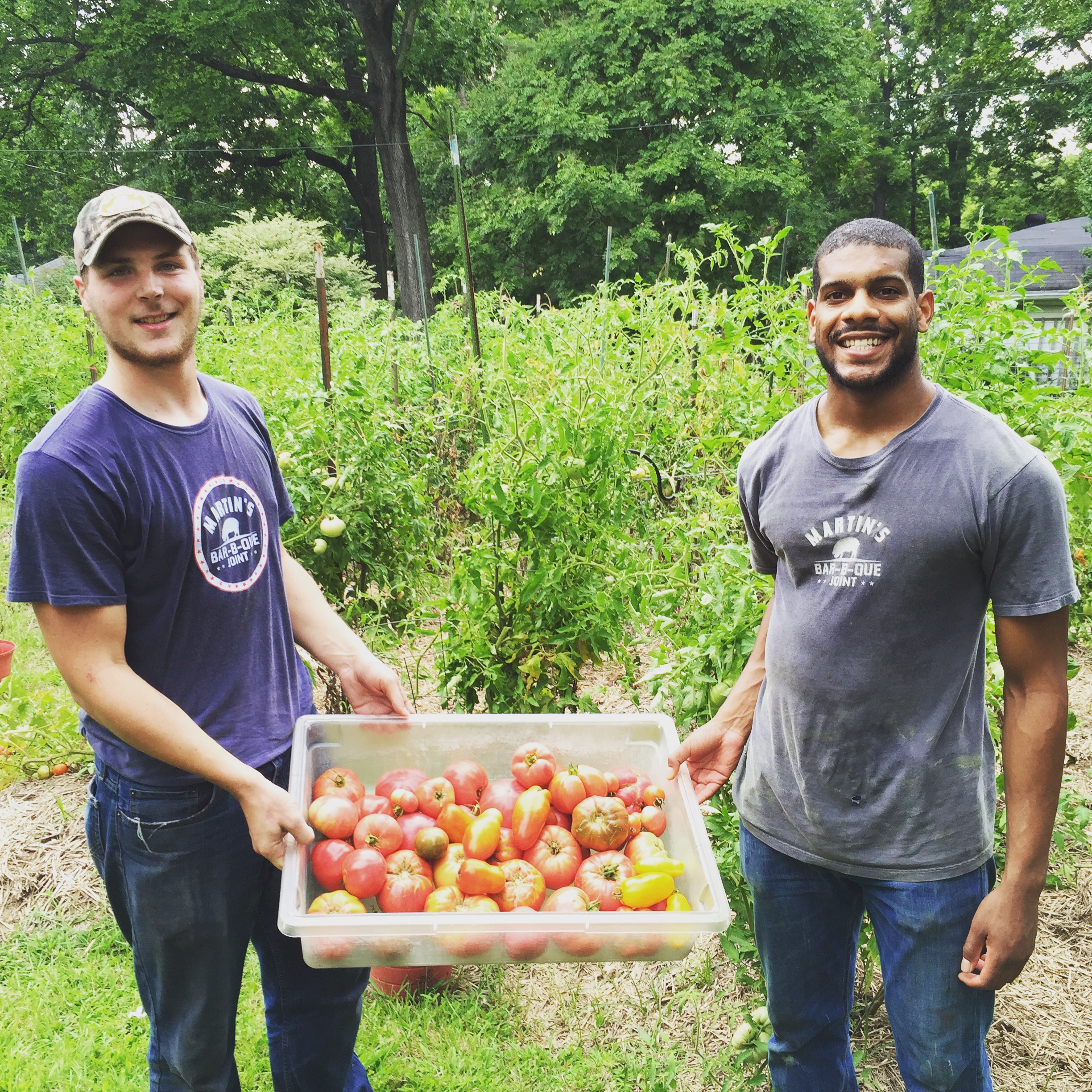 The Martin's crew swings by Pat's house to get fresh tomatoes for the restaurants.
