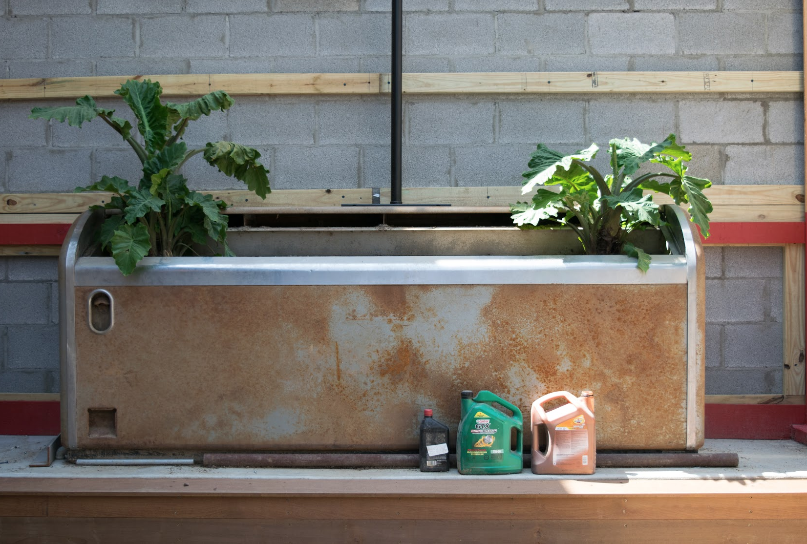 Even old drink coolers can be turned into planters!