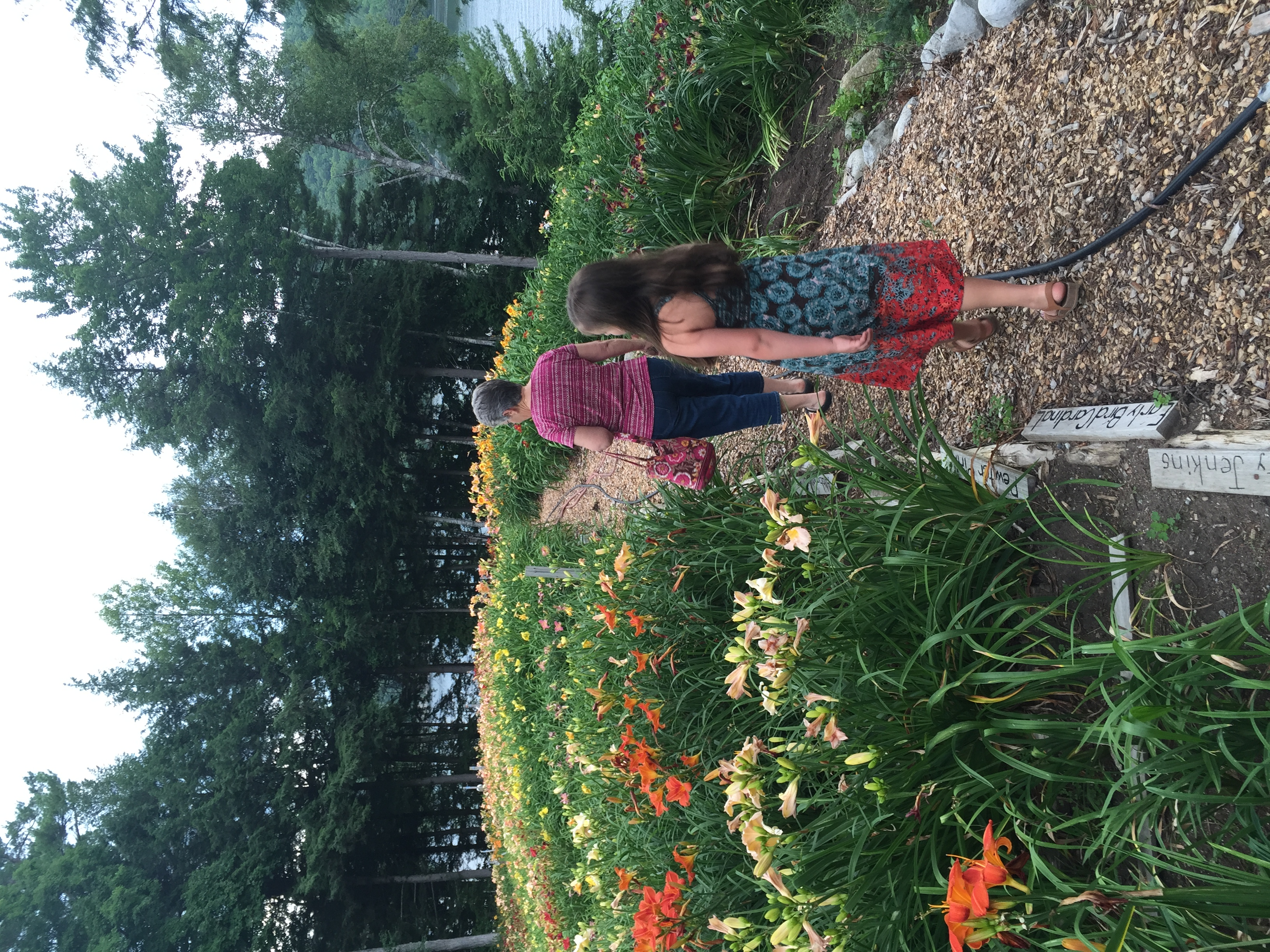 Kaia and Aunt Niki wandering the rows