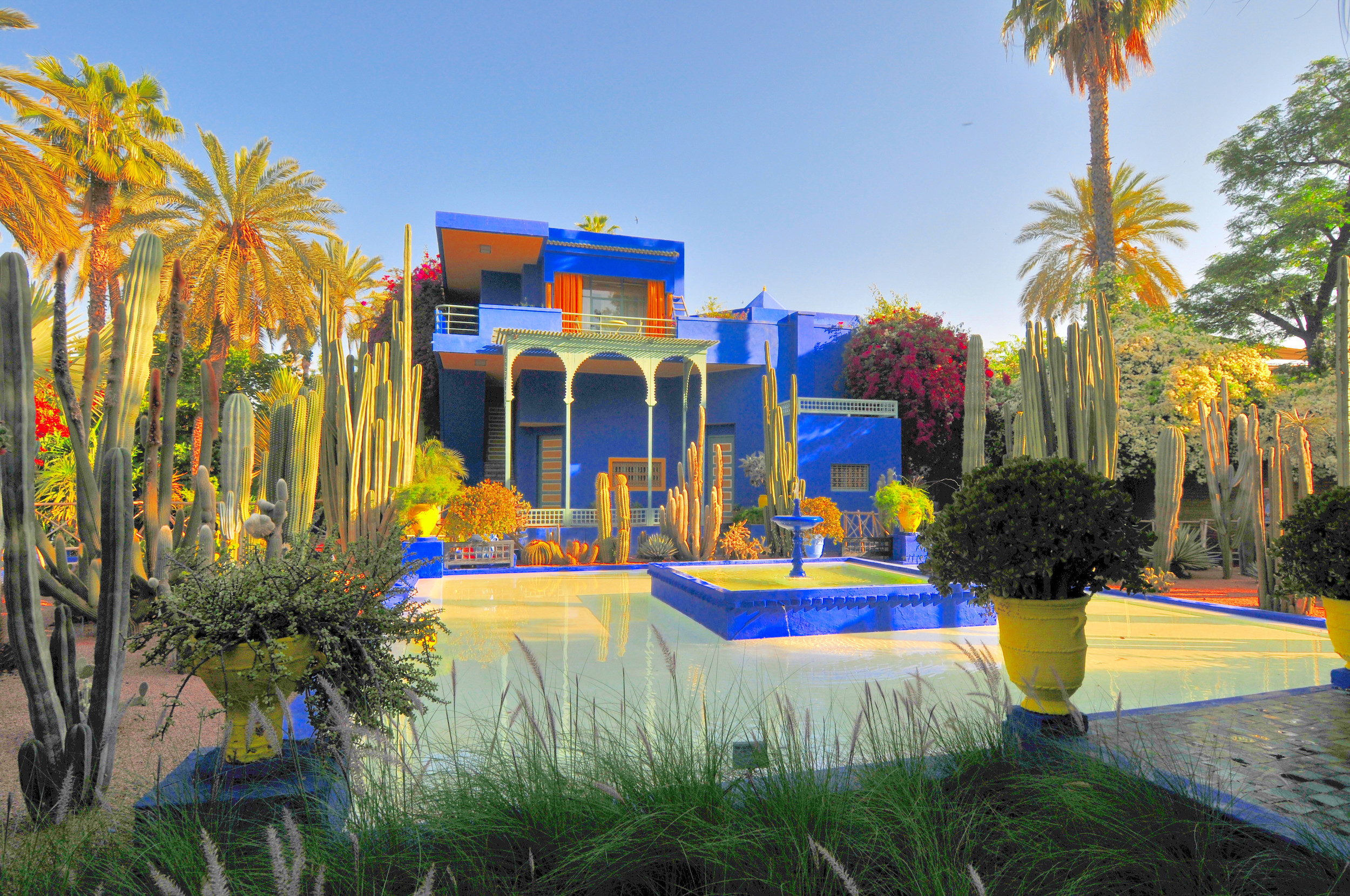 The Jardin Majorelle In Morocco Is A Colorful Gem Of A Garden