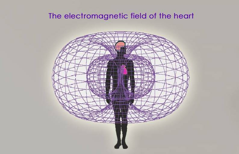 Heart-field.jpg