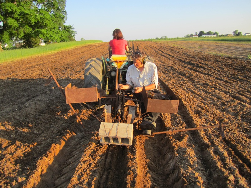 Aaron and Kari can often be seen together working on the farm or riding in the tractor.