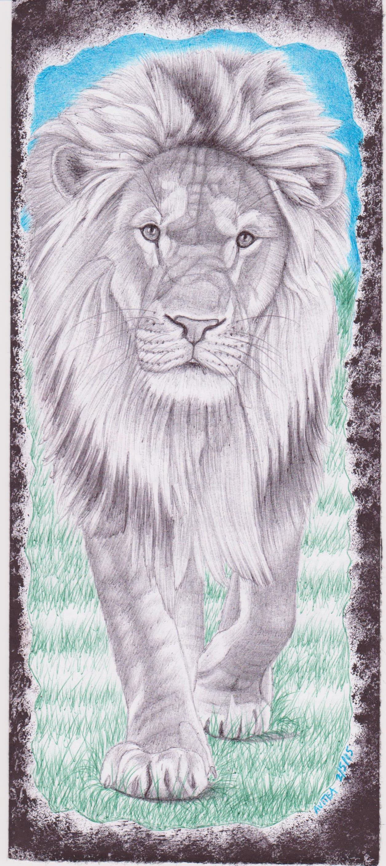Lion by Christopher Avitea 001.jpg
