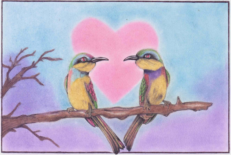Love birds on a branch.jpg