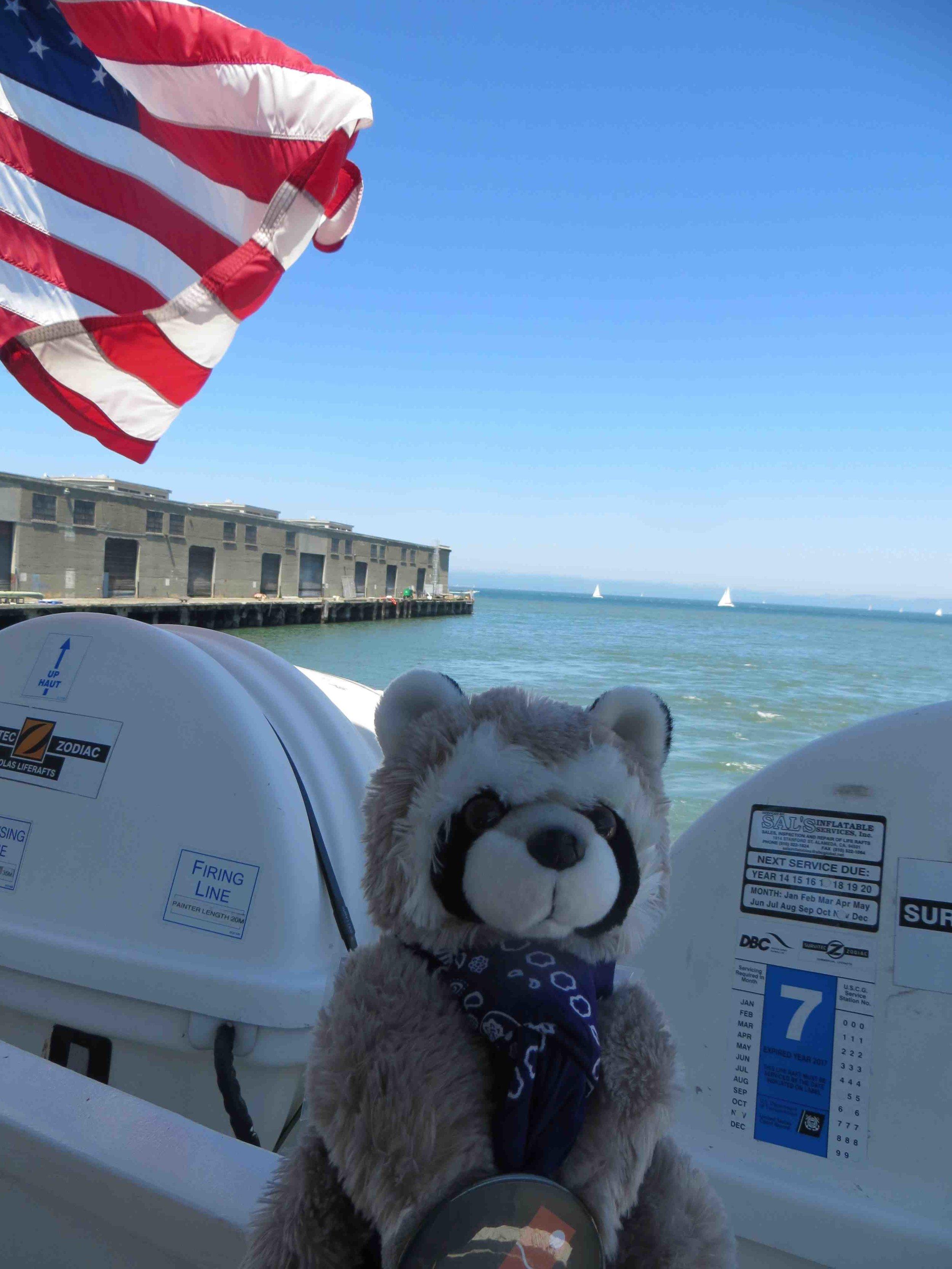 Rapahel the Raccoon on the Alcatraz Cruises Ferry -003.jpg