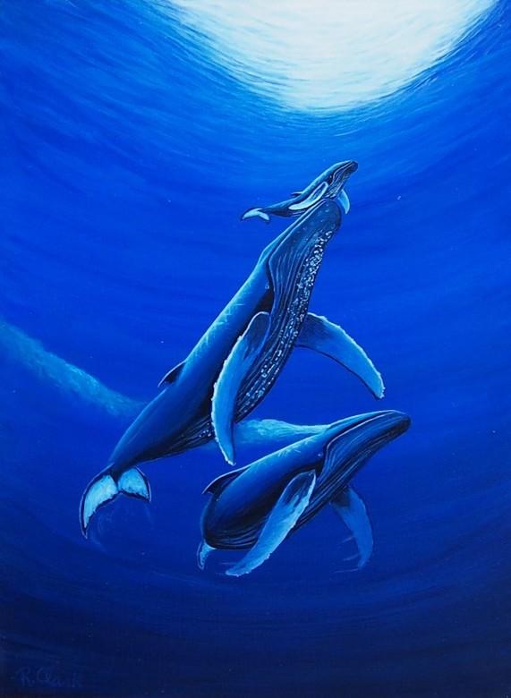 Blue Whales by Royal Clark.jpg