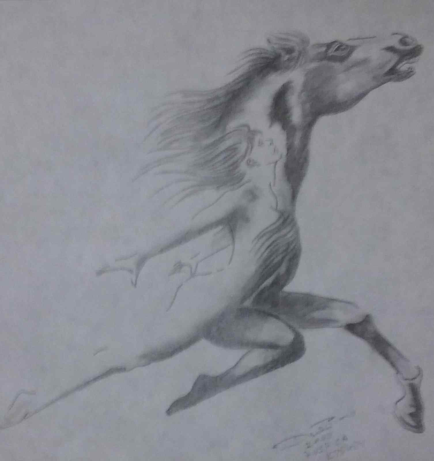 horse woman pencil drawing by Dino-horse woman pencil drawing by Dino - Copy.jpg