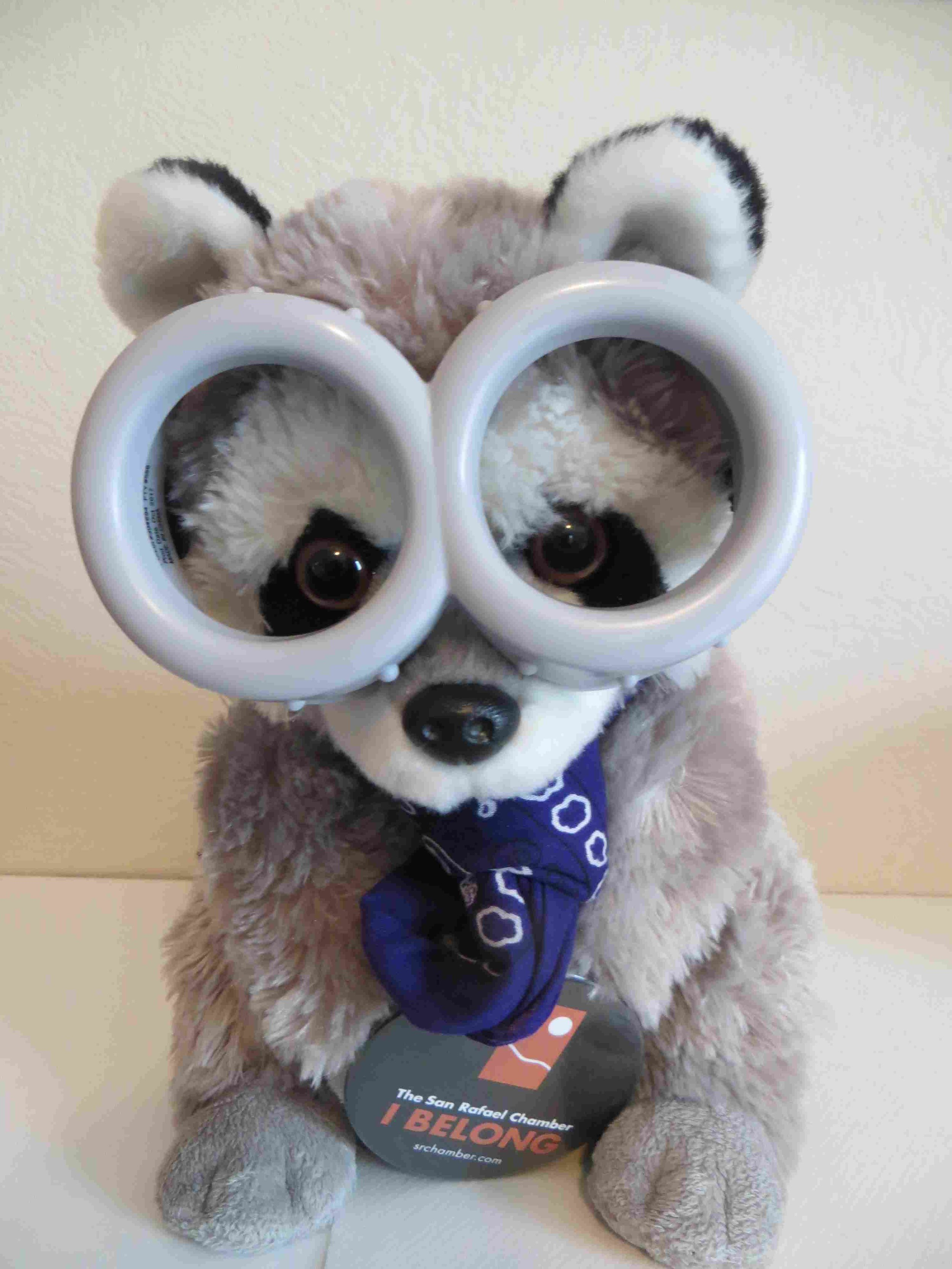 Rafael SRCOC Raccoon Mascot a-007.jpg