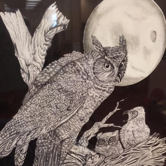 mama owl -IMG_4218 - Copy.jpg