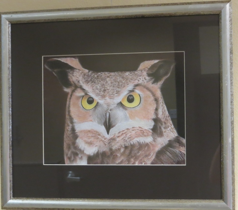 Owl by Robert Ramirez-017 - Copy.jpg
