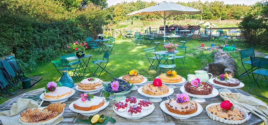 Den hyggelige naturcafé - med stor kagebuffet -ligger ikke langt fra Blovstrød