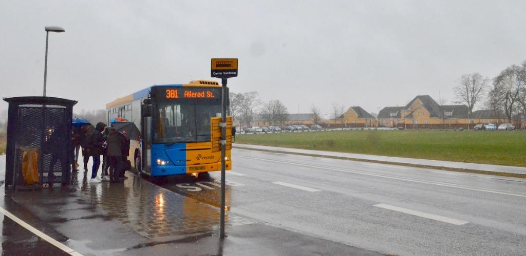 Bus 381 kører fra Hørsholm til Allerød,men mange unge fra Center Sandholm betaler ikke for turen. Arkivfoto:AOB