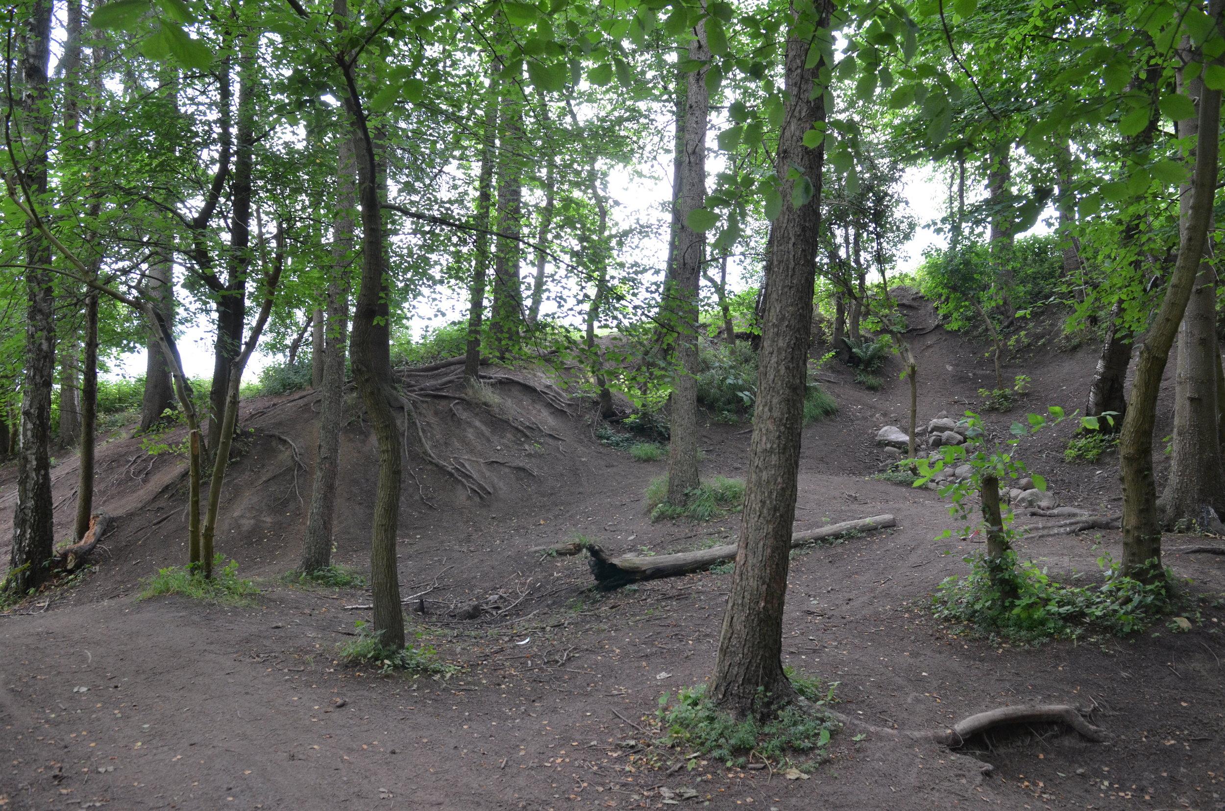 Turen går bl.a. forbi de gamle Allerød- og Blovstrød-teglværker og deres første lergrave. Her vil snart en ny bydel rejse sig og en skov blive åbnet. Arkivfoto: AOB