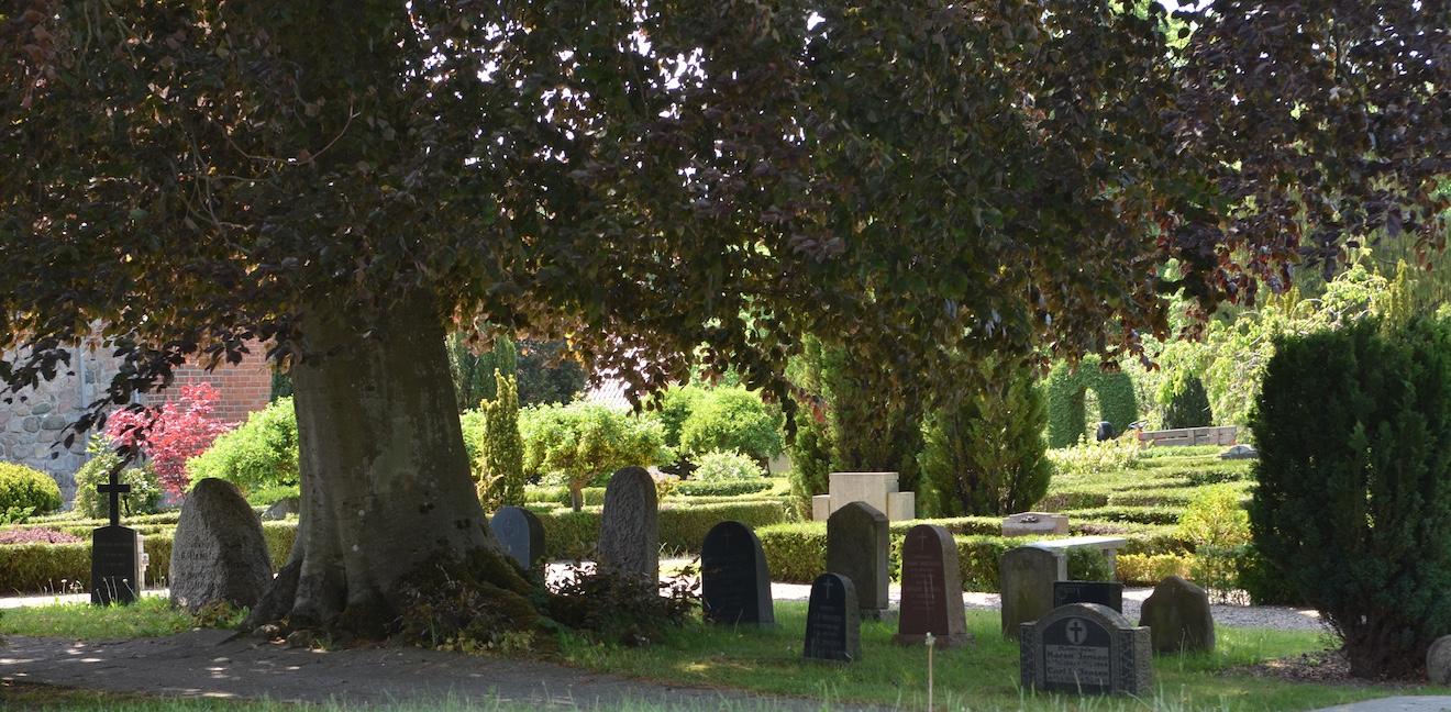 Menighedsrådet har foreslået - og fået godkendt - at man ved den store rødbøg samler 15 gravstene med lokalnavne, der repræsenterer de gamle bebyggelser og større gårde i Blovstrød sogn. Foto: AOB