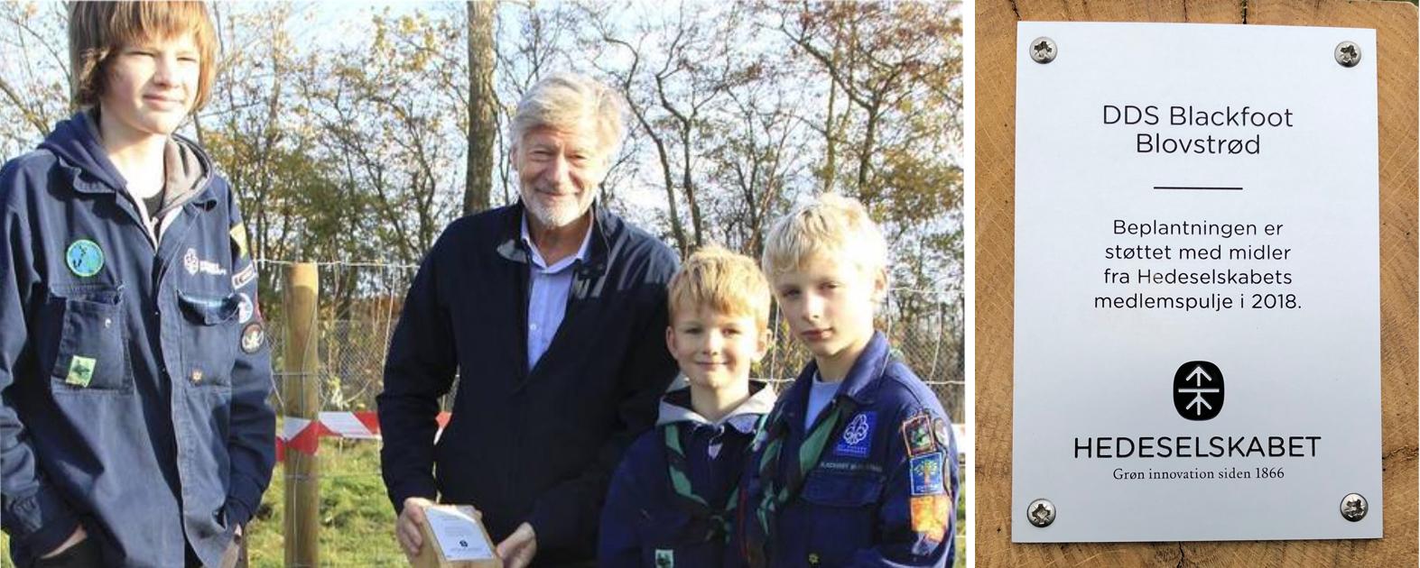 Hedeselskabets lokale ambassadør, Hans Peter Hjerl, får hjælp af spejderne til 'plantning' af sponsorskiltet, der fortæller at beplantningen er støttet med midler fra Hedeselskabets medlemspulje. Privatfoto