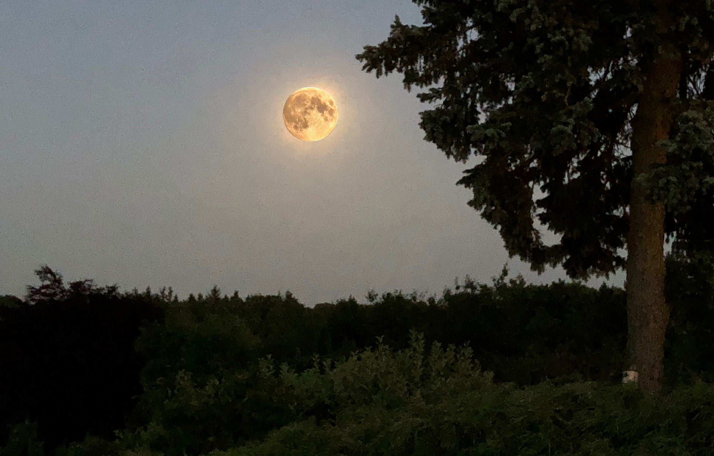 Første søndag efter første fuldmåne efter forårsjævndøgn falder påsken. Bare ikke lige i år. Manipuleret foto: AOB
